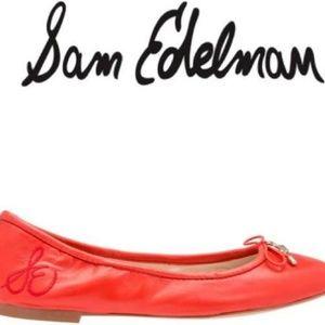 Gorgeous Sam Edlelman Felicia Ballerina Shoes